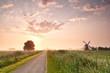 path in Dutch farmland with windmill