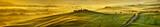 Fototapety HI res mega pixel  Tuscany hills panorama