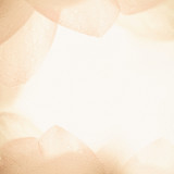 Fototapety sweet color flower petals in soft color and blur style on mulberry paper texture