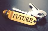 Future Concept. Keys with Golden Keyring. - 87171705