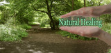 The Path To Natural Healing - female parallel hands with the words Natural Healing floating between on a green woodland path background depicting the path to natural healing