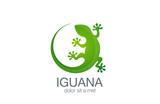 Lizard Logo design vector template. Iguana icon illustration...S - 87320720