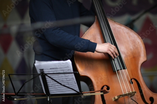 Musian's fingers on a contrabass strings Poster