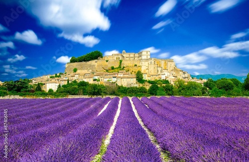 Foto op Canvas Lavendel Provence - Lavender fields in France