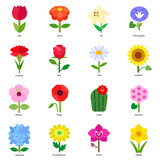 Fototapety A collection of common flowers as vector icons