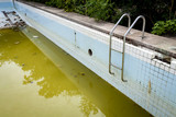 Fototapety Dirty water in old concrete swimming pool