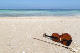 Violin at the seashore