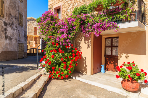 Entrance to typical house decorated with flowers in Piana village, Corsica island, France © pkazmierczak