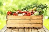 Fototapety vegetables