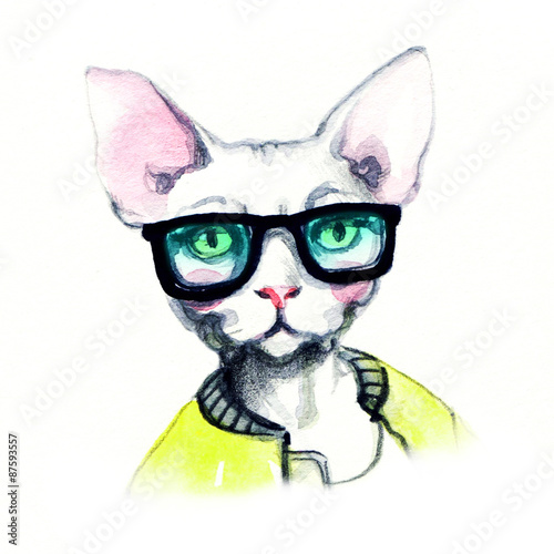 fashion animal .watercolor illustration - 87593557