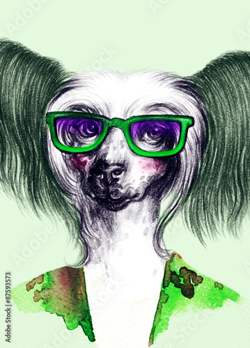 fashion animal .watercolor illustration - 87593573