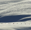 Snow Fences Winter Fields