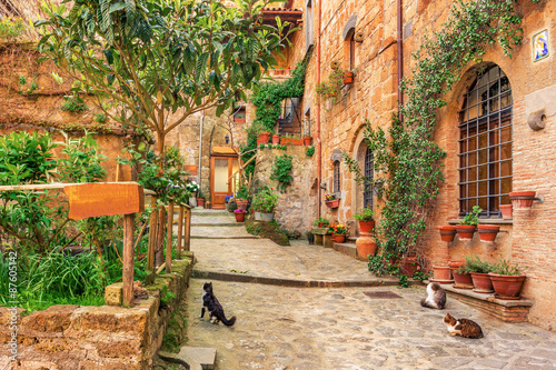 Fototapety, obrazy : Beautiful alley in old town Tuscany