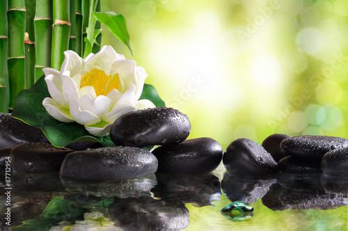 lilia-wodna-na-wiele-czarnych-kamieni-odbite-w-wodzie