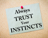 Always Trust Your Instincts Message written on paper note poster