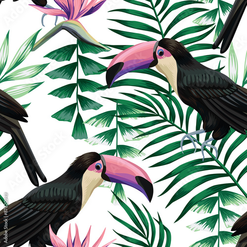 toucan tropical pattern - 87820949