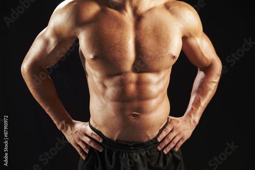 Male Torso Front Male Bodybuilder Torso Front