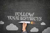 Follow your instincts concept poster