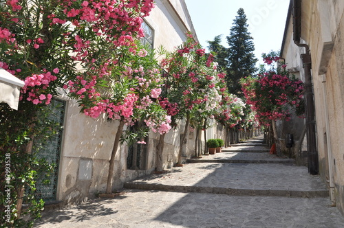 Narrow stone street with flowers in italian town - 87993538