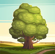 Old oak tree. Vector illustration.