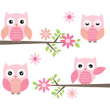 Fototapety Cut Owl and Branches