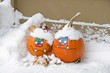 pair of  fun faces painted on Halloween pumpkins in snow