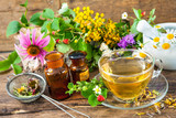 Cup of herbal tea with wild flowers and various herbs - 88214139