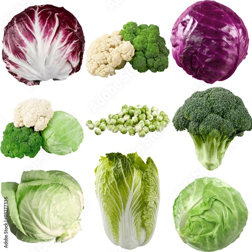 Poster Cabbage, Lettuce, Isolated.