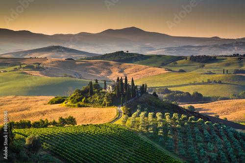 Fototapeta Scenic Tuscany landscape at sunrise, Val d'Orcia, Italy