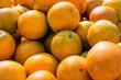 Florida oranges background