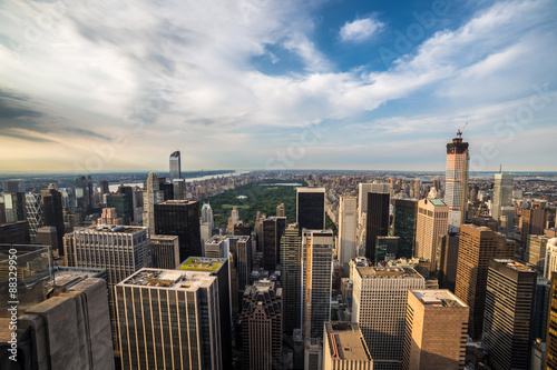 Foto op Aluminium New York Aerial view of Central park in New york city.