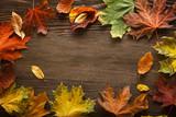 Fototapety autumn leaf on wood background