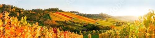mata magnetyczna Sonnenuntergang in den Weinbergen