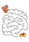 gioco del labirinto, lo scoiattolo