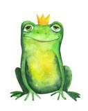 Frog in crown. Watercolor