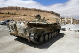 Infantry fighting vehicle of the Syrian National Army near the entry to Ma