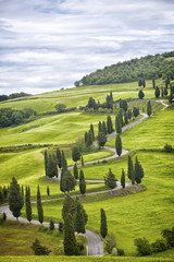 Beautiful landscape of Tuscany with the twisting road and cypresses © Shchipkova Elena