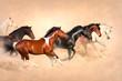 Horse herd run gallop in desert at sunset
