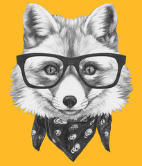 Original drawing of Fox with glasses and scarf. Isolated on colored background