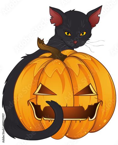 schwarzer kater mit halloweenk rbis stock image and. Black Bedroom Furniture Sets. Home Design Ideas