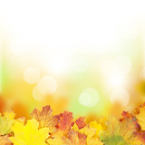 Fototapety Autumn background with maple leaves