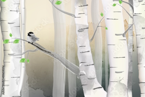 Forest illustration and birds