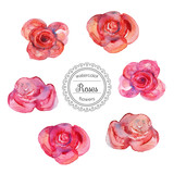 Vector illustration. Watercolor roses in vintage style for design. Set of red and pink roses with watercolor texture. Vintage hand drawn roses. Watercolor elements for  design and illustrations.