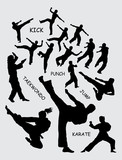 Taekwondo martial art silhouettes