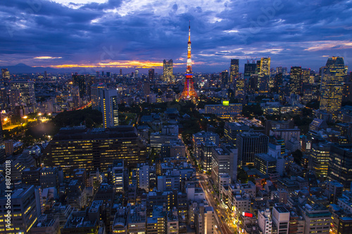 Tokyo, city aerial skyscape view of buildings and street. Japan,