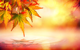 Fototapety Autumn spa background with red leaves on water
