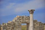 Развалины древнего Херсонеса,