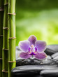 spa concept with zen basalt stones,bamboo and orchid