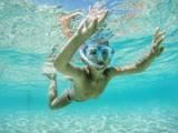 underwater - 88823929