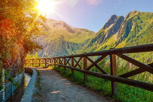 mata magnetyczna Swiss Alps Sunny Trail